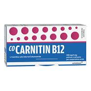 Co-Carnetina B12 10 Fl 10ml